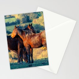 Equine Soulmates Stationery Cards