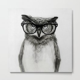 Mr. Owl Metal Print