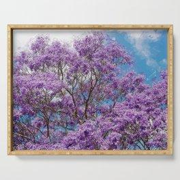 Beautiful Jacaranda Purple floral portrait painting against sea blue sky  Serving Tray