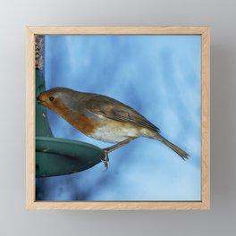 Robin on feeder Framed Mini Art Print