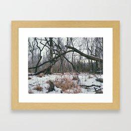 Branch Ephemera Framed Art Print