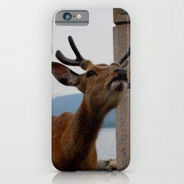 miyajima deer iPhone Case