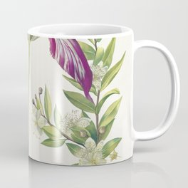 Tulip two Branches of Myrtle and two Shells (1700) attributed to Maria Sibylla Merian Coffee Mug
