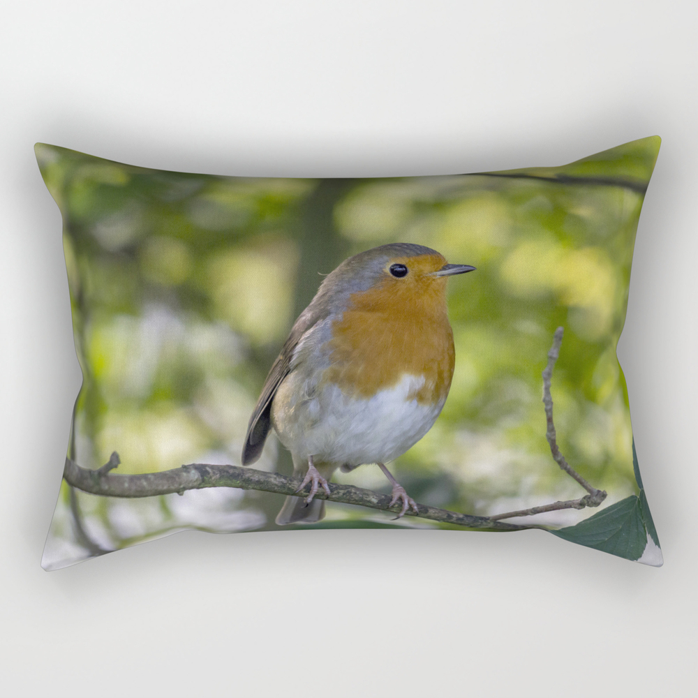 Robin Redbreast. Rectangular Pillow (RPW7677595) photo