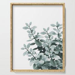 Eucalyptus Leaves Green Vibes #1 #foliage #decor #art #society6 Serving Tray