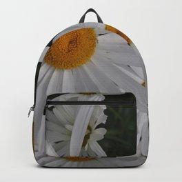 Daisies in Alaska Backpack