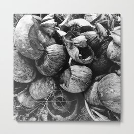 Coconut Shell Black and White Metal Print