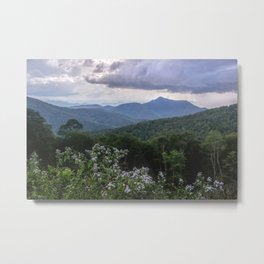 Smoky Mountain Wildflower Adventure - Nature Photography Metal Print