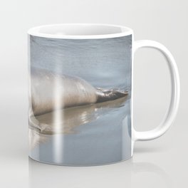 Pacific Seal Coffee Mug