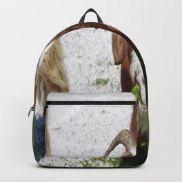 Whimsical Portrait of a Horned Goat Grazing Backpack