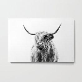 portrait of a highland cow (horizontal) Metal Print