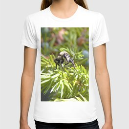 Watercolor Fly, Robber Fly 01, and Douglas Fir, RMNP, Colorado T-shirt