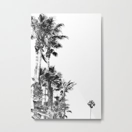 Black and White Palm Trees- Baby Palm Metal Print