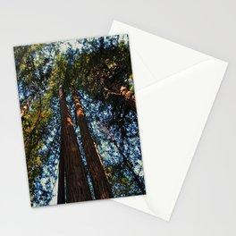 Muir Woods- horizontal Stationery Cards