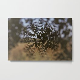 Hidden landscape Metal Print