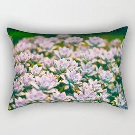 Beautiful Purple Succulents Rectangular Pillow
