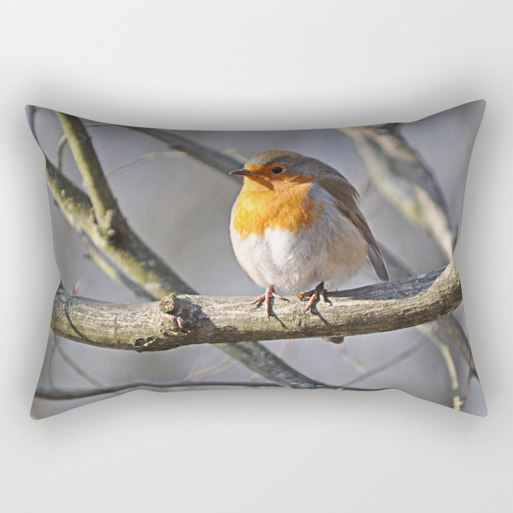 Robin Redbreast Rectangular Pillow (RPW915575) photo