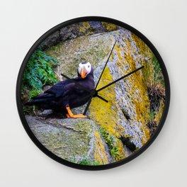 Alaskan Tufted Puffin Wall Clock